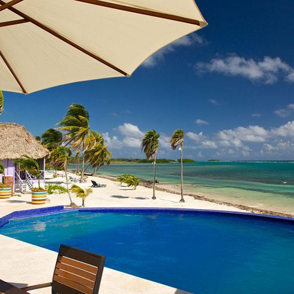 Pool at Blackbird Caye Resort