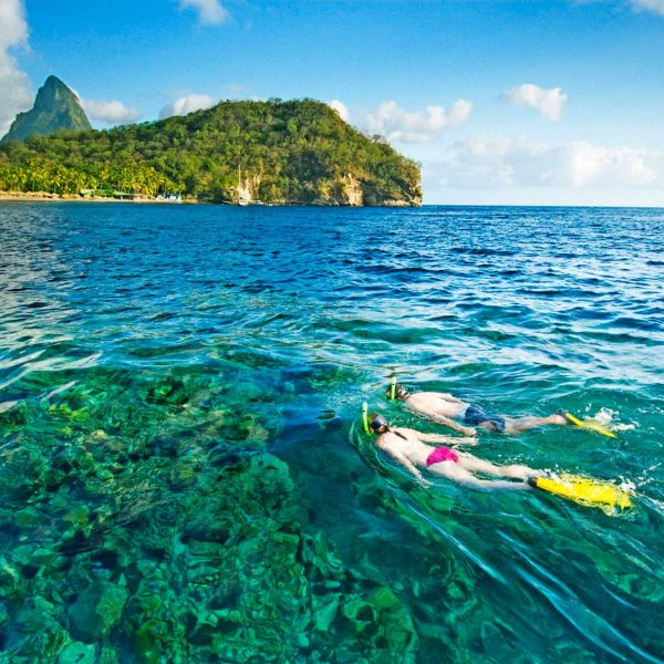 Snorkeling at Anse Chastanet