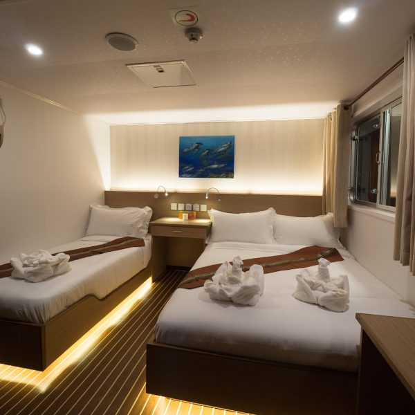 White Manta Explorer cabin