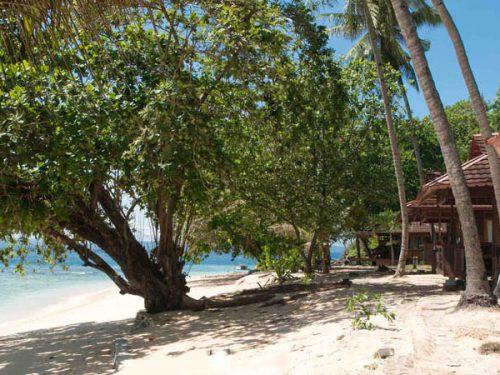 Murex Dive Resort Bangka